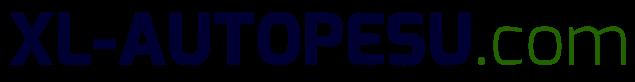 XL-Autopesu logo